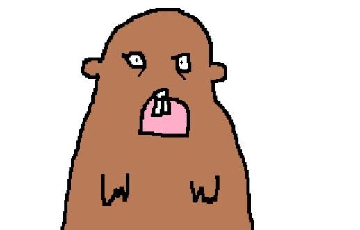 marmot stares at boy 2